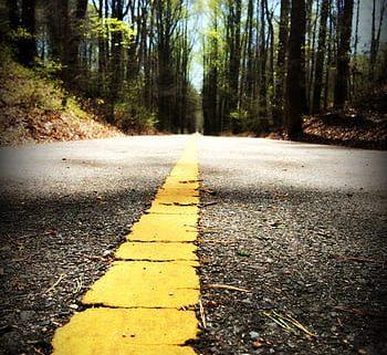 walking path trail nature royalty free thumbnail 350x321 - RECLAMACIÓN DE DEUDAS EN EL ÁMBITO DEL TRANSPORTE ¿CÓMO COBRAR TUS FACTURAS PENDIENTES? ¿A QUIÉN RECLAMAR EN CASO DE IMPAGO?