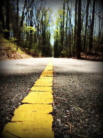 walking path trail nature royalty free thumbnail - Inicio